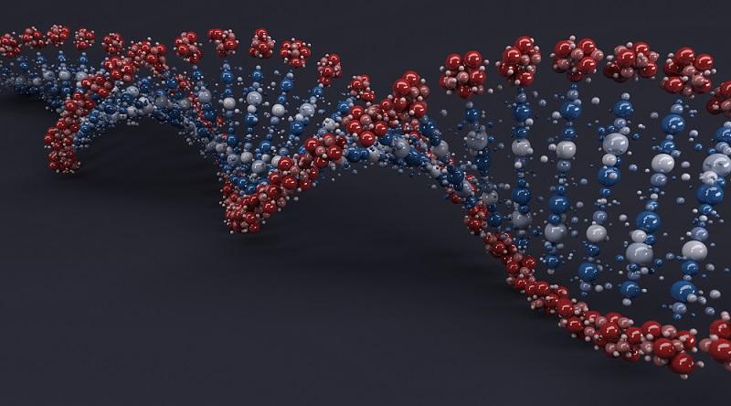 klasifikace mutací